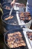 Bbq - Carne de vaca, cerdo y pollo en un palillo en una parrilla caliente Imágenes de archivo libres de regalías