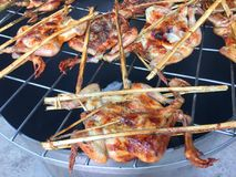BBQ chaud et épicé de poulet grillé Photographie stock libre de droits