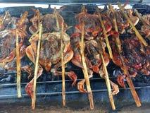 BBQ chaud et épicé de poulet grillé Images libres de droits
