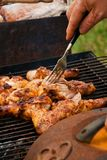 BBQ Chicken royalty free stock images