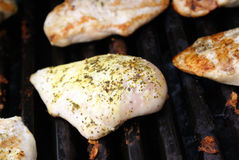 BBQ Chicken Breast. Fresh lemon chicken breast grilling on the bbq stock photos