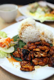 BBQ Chicken Rice Stock Images