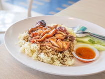 BBQ Chicken Rice Royalty Free Stock Image