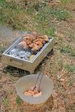 BBQ. Close up photo of cooking meet Royalty Free Stock Photos