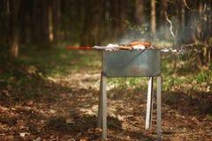 BBQ dans les bois, le concept de la relaxation avec des amis dans Images stock