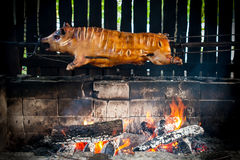 BBQ de porc Photographie stock libre de droits