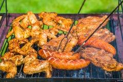 BBQ in de tuin - selectie van vlees bij de vlammende grill Royalty-vrije Stock Foto