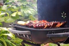 BBQ del cortile Immagine Stock Libera da Diritti