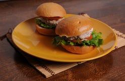 BBQ dell'hamburger del pollo Fotografia Stock Libera da Diritti