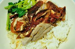 BBQ duck over steamed rice Royalty Free Stock Photography