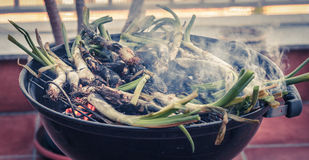 BBQ em casa Fotos de Stock Royalty Free