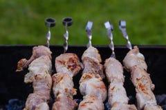 Bbq-Fleisch auf Grill im Garten Lizenzfreie Stockbilder