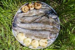 BBQ fresco 1 del pesce della trota Immagini Stock