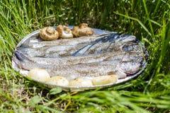 BBQ fresco 2 del pesce della trota Immagini Stock
