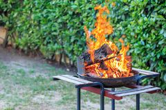 BBQ on the garden Royalty Free Stock Photography