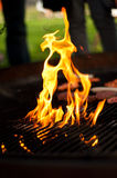 BBQ grill Royalty Free Stock Images