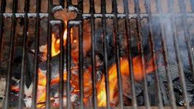 BBQ Grill en gloeiende steenkolen U kunt meer BBQ, geroosterd voedsel, brand zien stock videobeelden