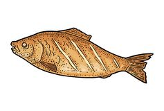 BBQ grilled whole fish top view. Vintage color vector engraving stock illustration