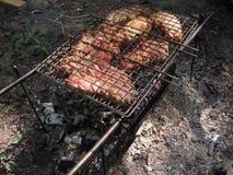 Bbq-griskött på naturen Arkivfoto