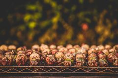 Bbq-Kebab stockfotografie