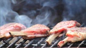 BBQ, lamb chops on grill stock footage