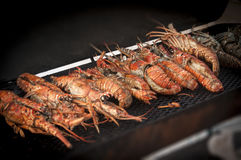 BBQ Lobsters. Lobsters being barbecued on a half drum BBQ at the lobster festival in Caye Caulker, Belize royalty free stock photography