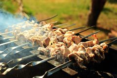 Bbq Meat. Roasted meat pork prepared. Output on nature in wood meat Stock Image