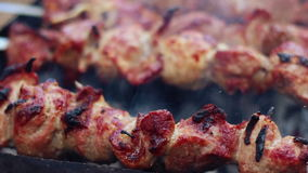BBQ meat grilling on wood coal. Cooking shish kebab on metal skewers stock footage
