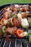 bbq-meatgrönsaker Fotografering för Bildbyråer