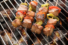 BBQ med matlagning kolgaller av fegt kött och peppar royaltyfri foto