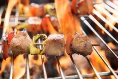 BBQ med matlagning kolgaller av fegt kött och peppar Royaltyfri Fotografi