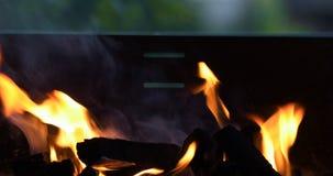 BBQ ogień zbiory
