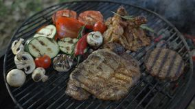 BBQ outdoors. Country rest, juicy and tasty bbc burger cutlet, beef steak, grilled chicken leg, fresh vegetables special. BBQ outdoors, juicy and tasty burger stock video