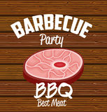 bbq party best meat Royalty Free Stock Image