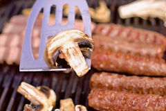 BBQ pieczarka Zdjęcie Stock