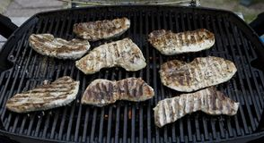 BBQ pork. Pork cutlets, cooking on the grill Stock Image