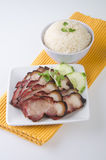 BBQ Pork and Crispy Pork with Rice. Royalty Free Stock Photo