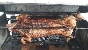 Closed up BBQ grilled pork on fire ready to dinner Stock Image