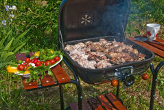 BBQ preparations Royalty Free Stock Photography