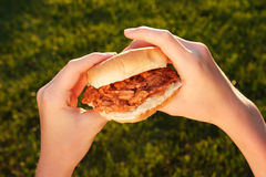 BBQ Pulled Pork Sandwich Royalty Free Stock Image