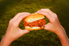 BBQ Pulled Pork Sandwich royalty free stock photography