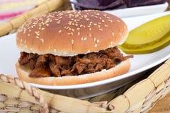 BBQ pulled pork sandwich stock photos