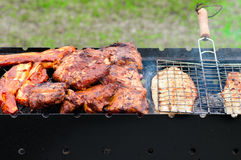 BBQ Ribs and fish  on grill with charcoal Stock Images