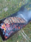 BBQ ribs royalty free stock image