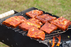 BBQ Ribs on grill with charcoal Royalty Free Stock Photo