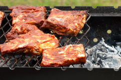 BBQ Ribs on grill with charcoal Stock Photography