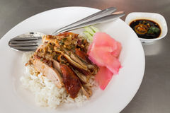 BBQ Roast Duck over Rice Royalty Free Stock Photos