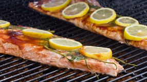 BBQ salmon Royalty Free Stock Photos