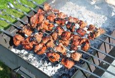 Bbq saporito della carne di maiale e del pollo sugli spiedi del metallo Fotografia Stock Libera da Diritti