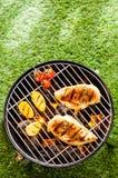 BBQ saudável do verão com a galinha nos carvões fotos de stock royalty free